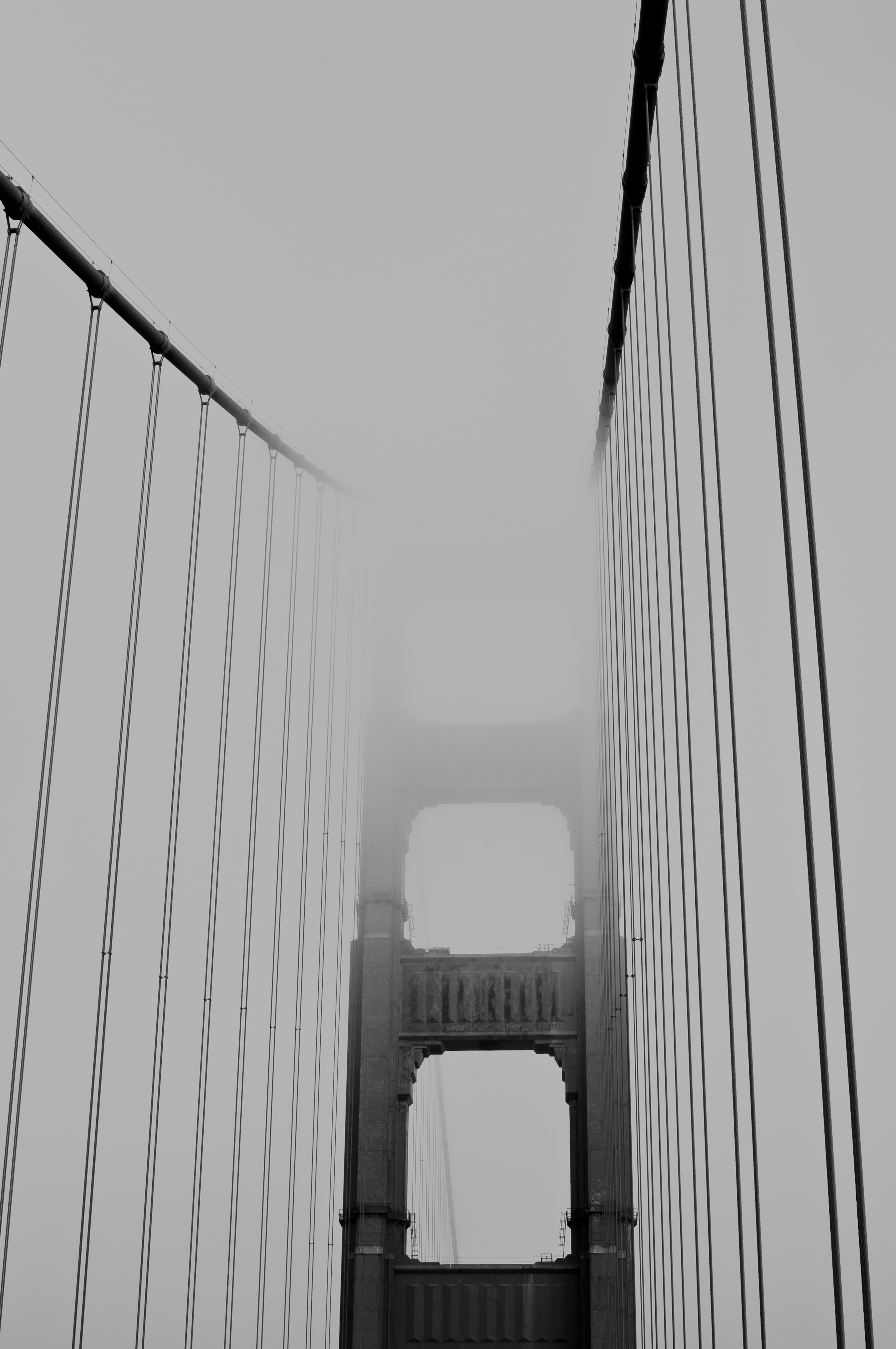 Bridge cables of Golden Gate hidden in fog
