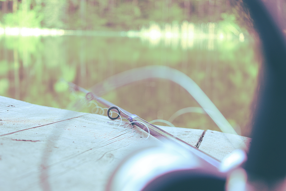 Person fishing in lake on wooden dock with fishing rod in Spring