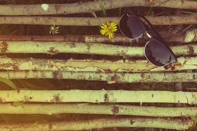 black framed ray-ban wayfarer sunglasses on wooden logs sunglass zoom background
