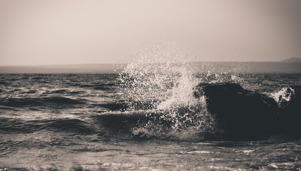 grayscale photography of water waves