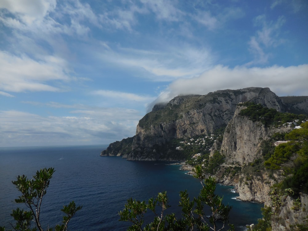 cliff surrounded with bushes under cirrus clouds