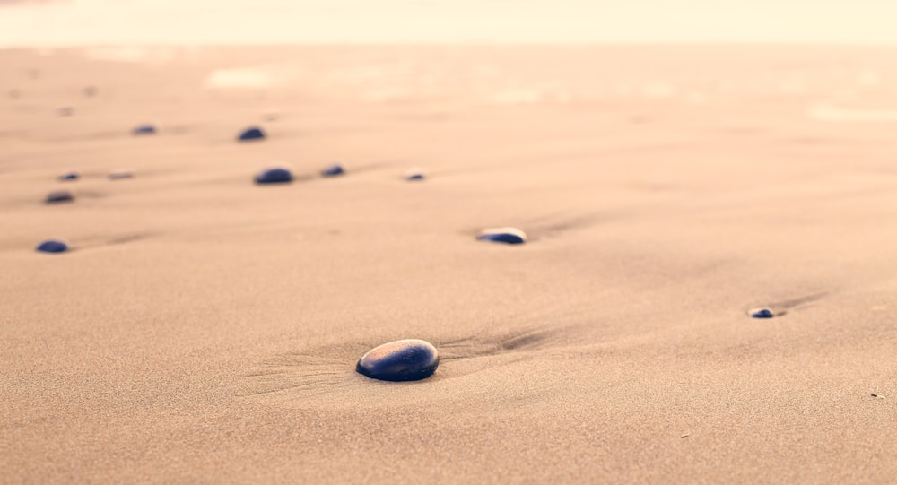 closeup photography of black stones on sand at daytime