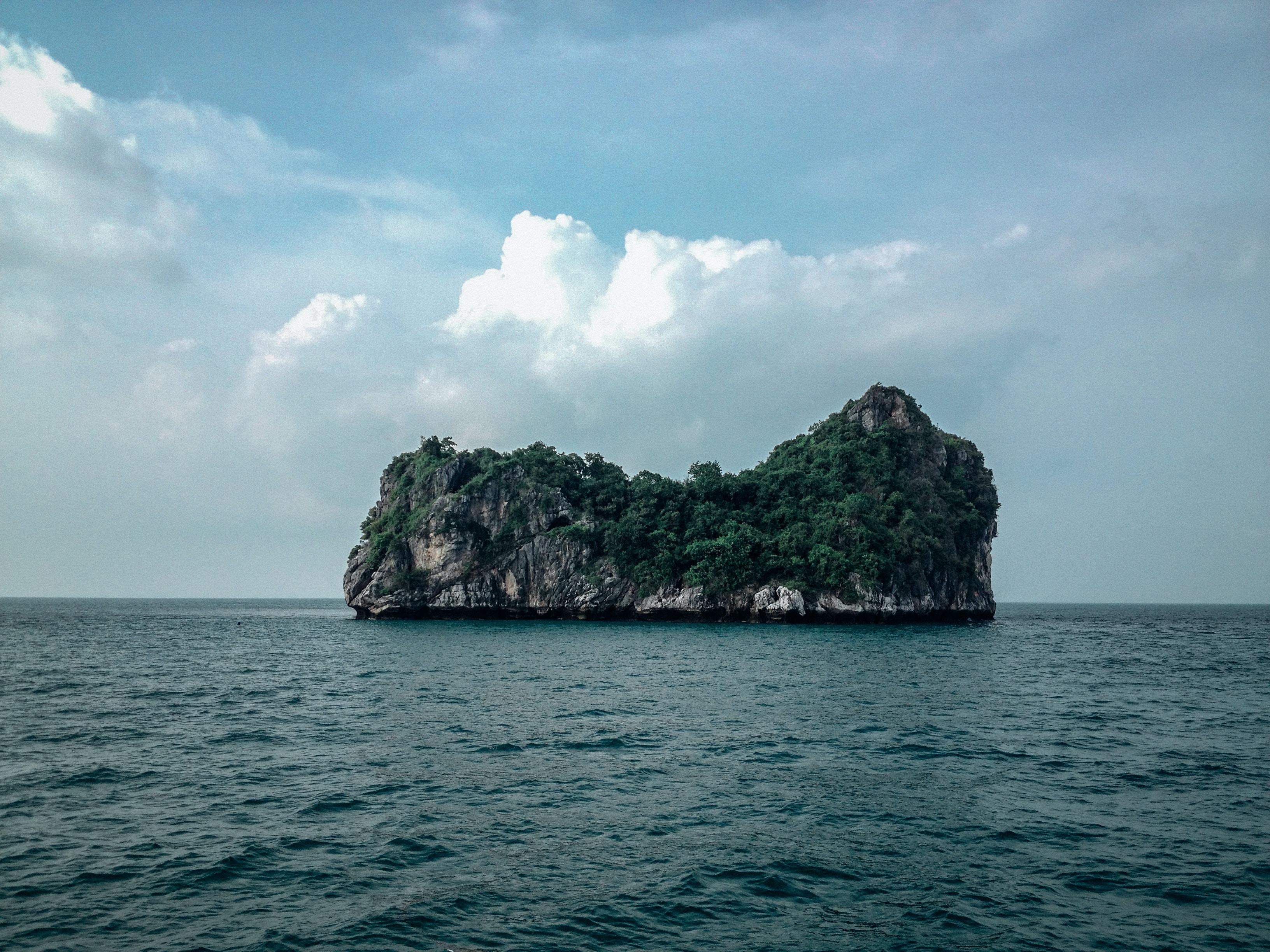 island with trees on sea under gray sky