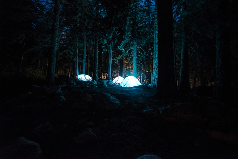 three dome tents with light between forest