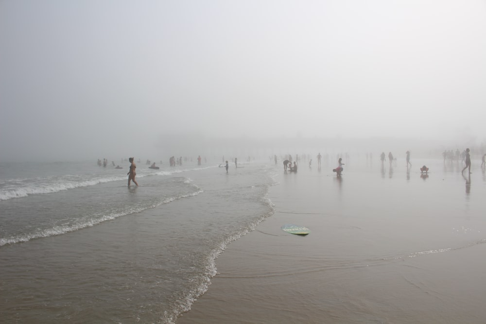 people near seashore during daytime