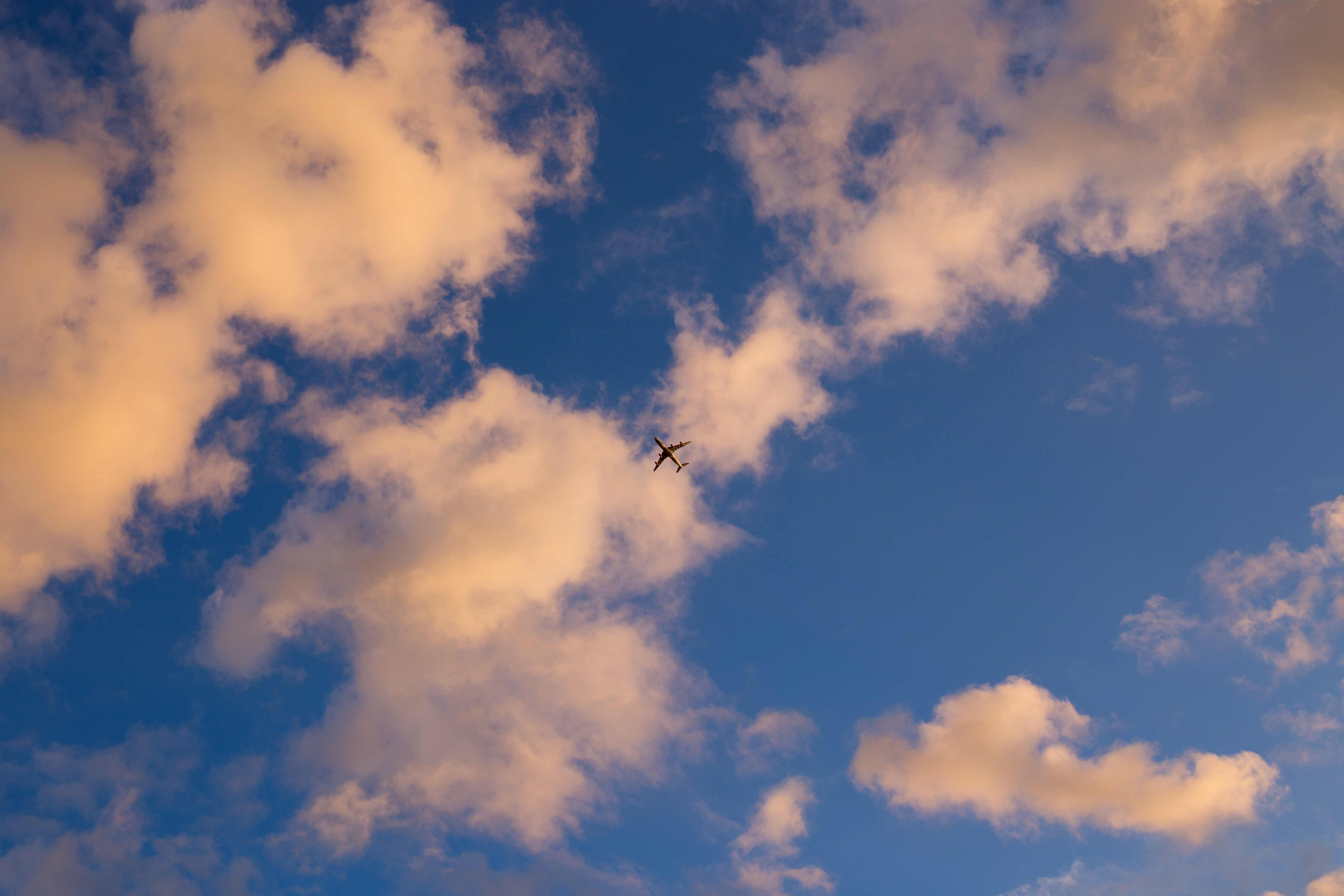 silhouette of plane flying under white and blue sky during daytime