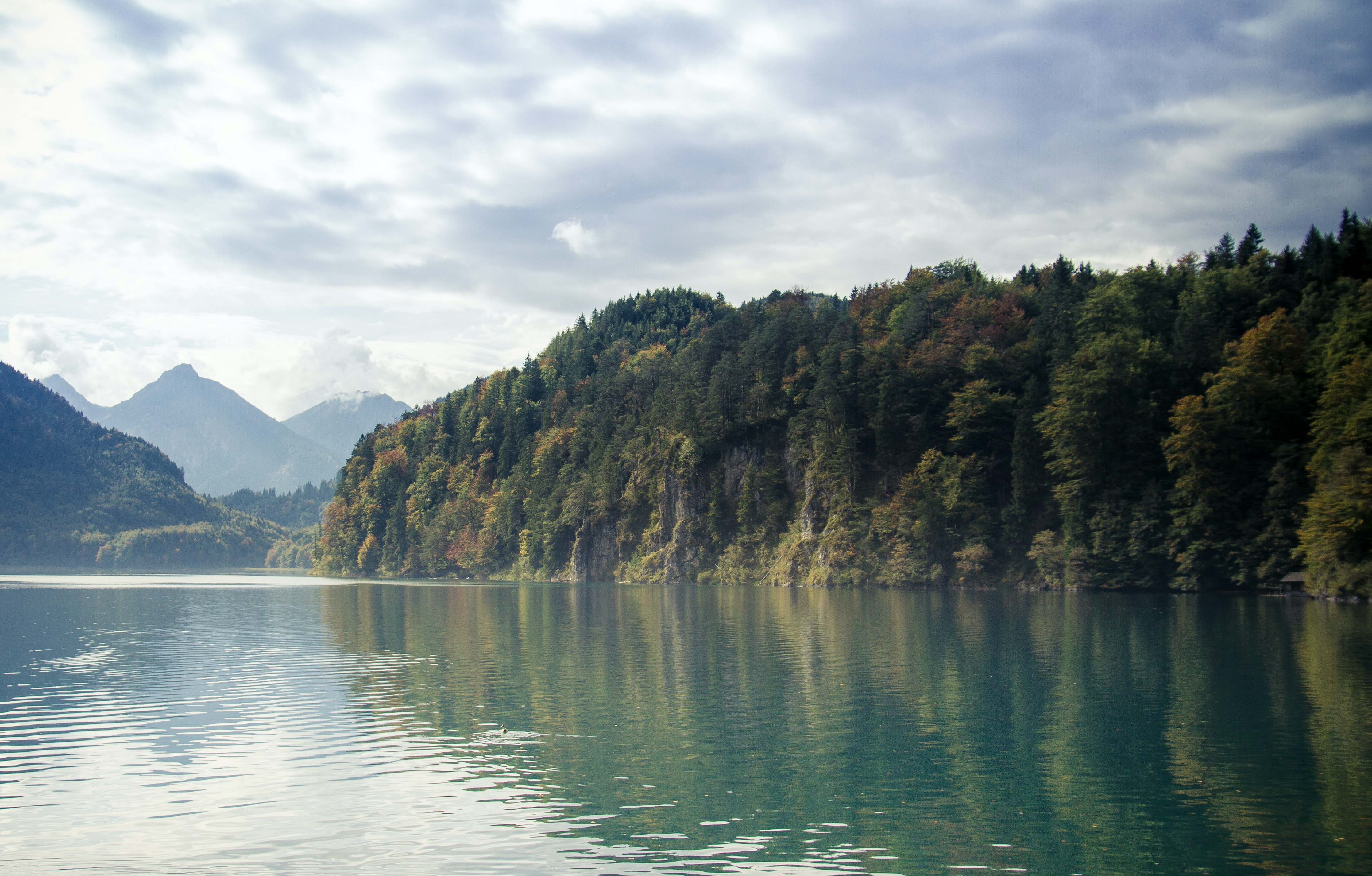 Steep wooded cliffs over a calm lake with mountains on the horizon