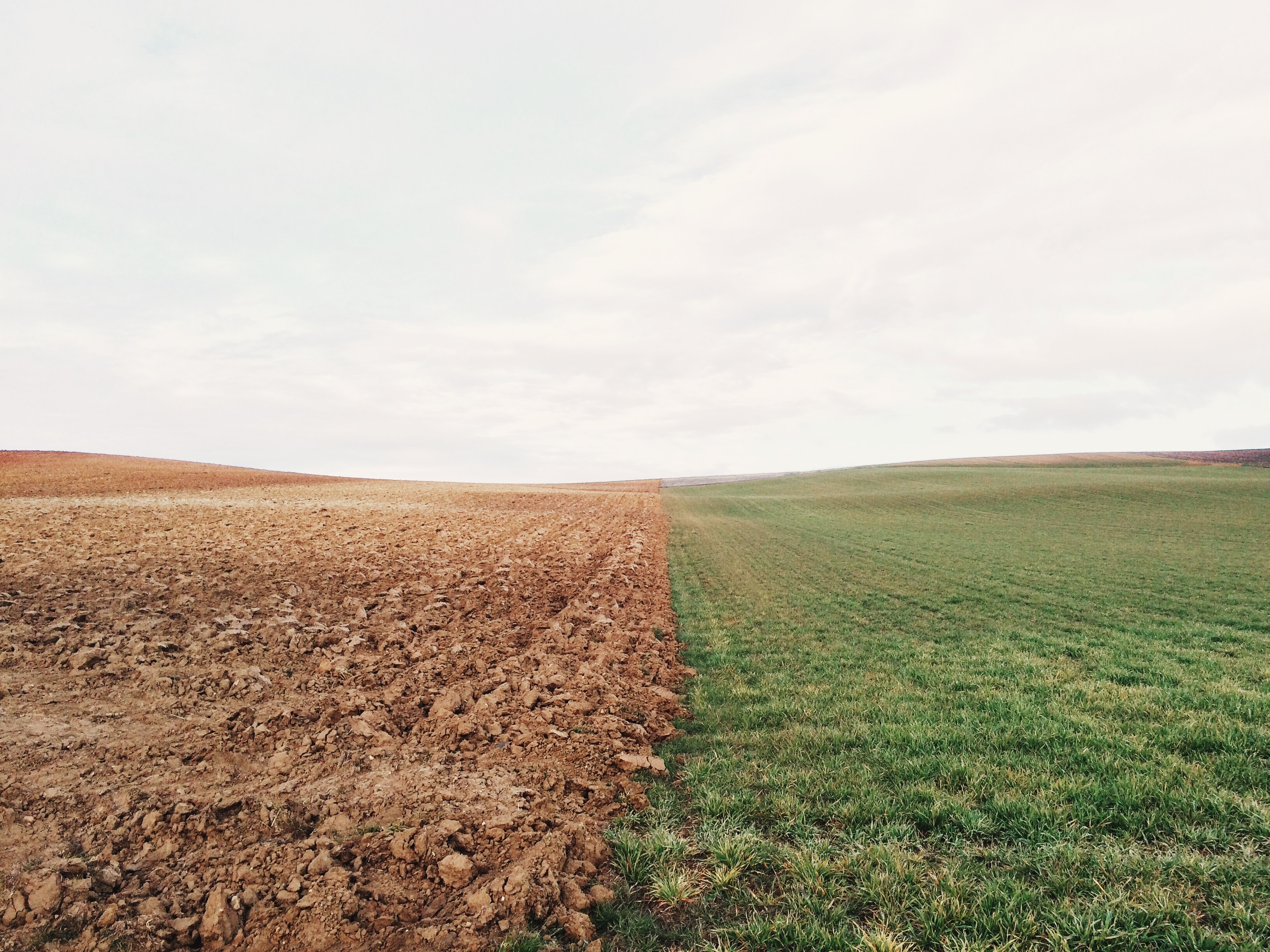 A dramatic shot of a straight line dividing a plowed field from a grass field