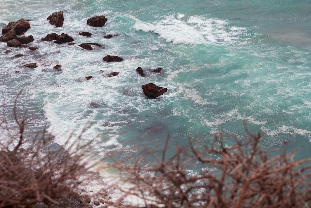 photo of beach at daytime