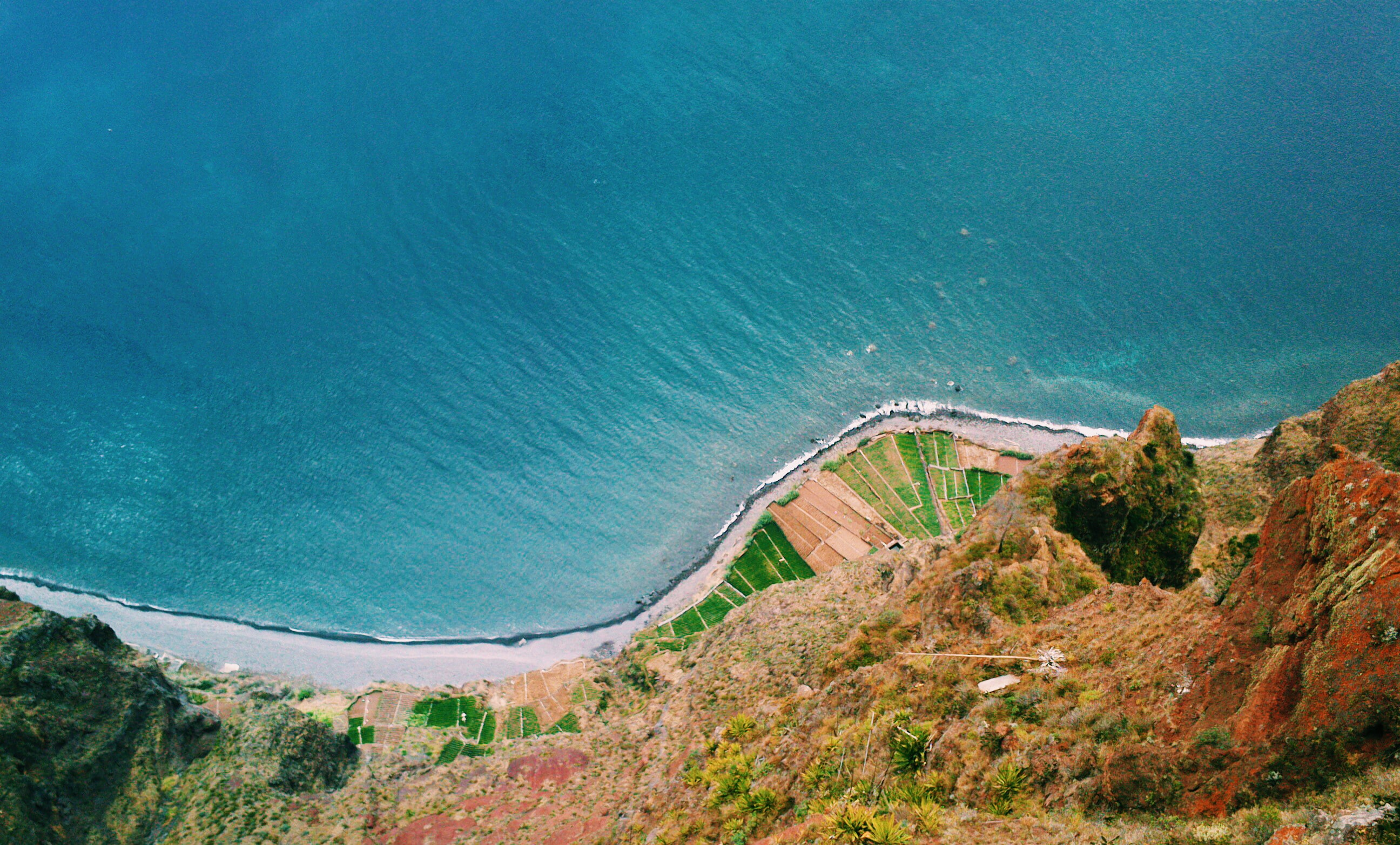Aerial shot of the coastline, beach, trees and cliff face
