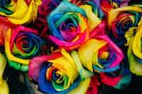 Update -(Wildflowers) backtocommaful stories