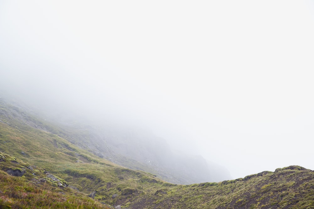 green mountain and fog