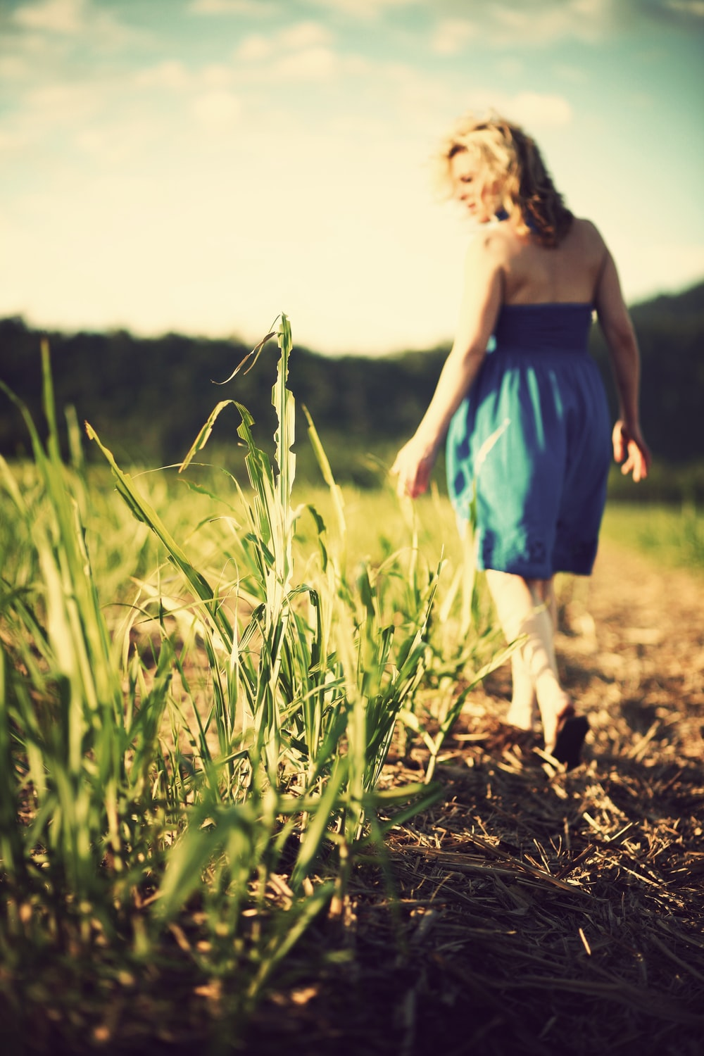 selective focus photo of woman wearing blue dress standing on grass field