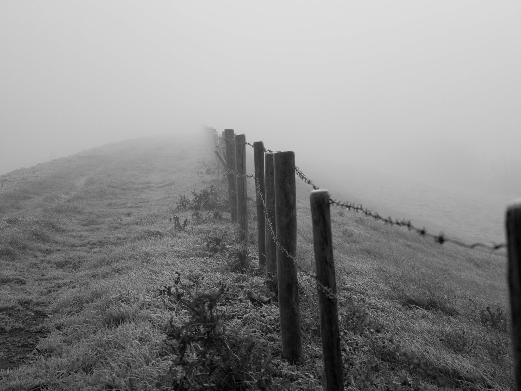 grayscale photo of wooden fence on grass field while fogging