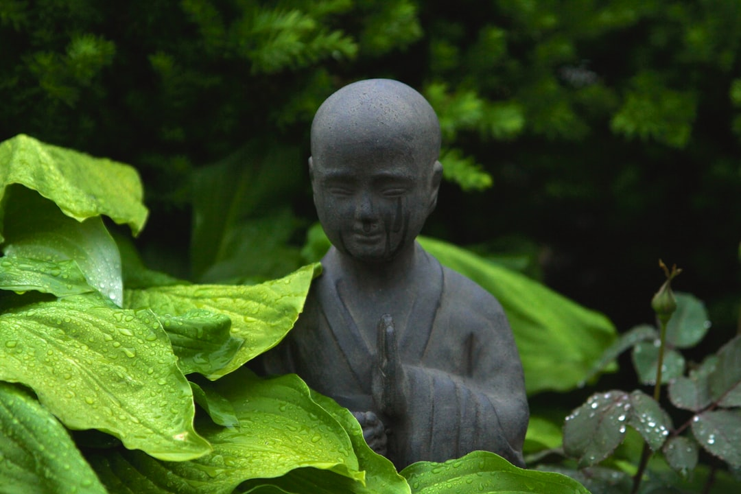 monk statue surrounded by plants outdoor during day