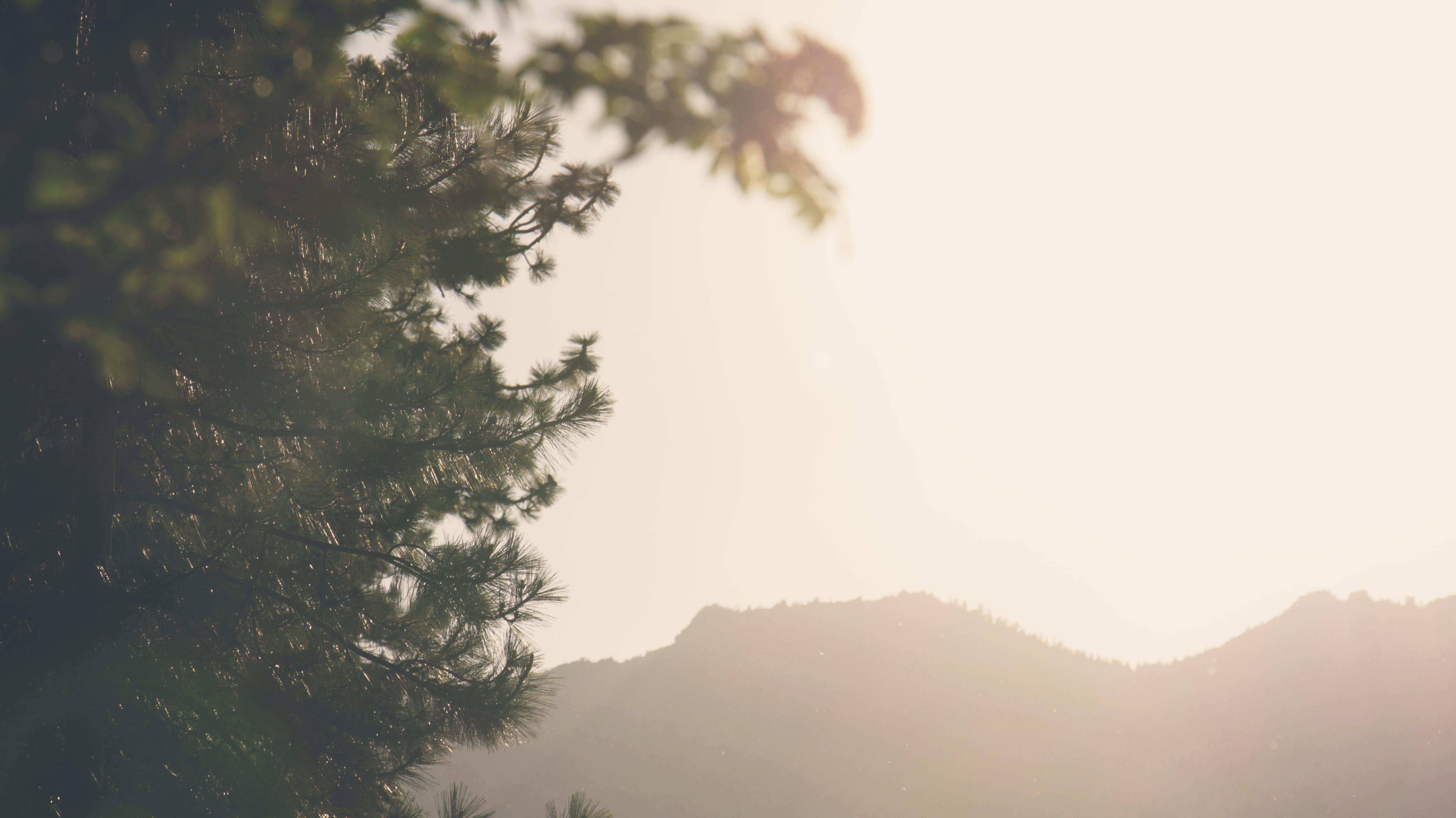 Sun shines over the horizon forming mountain silhouettes