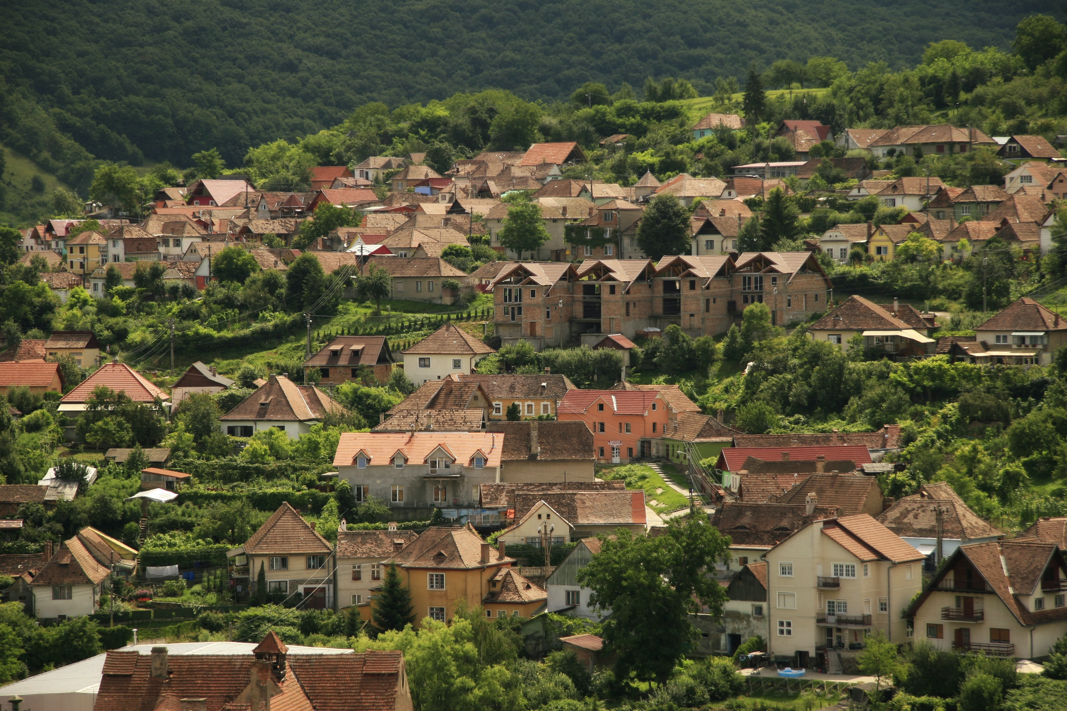 Village houses built up the slope of a forested hill