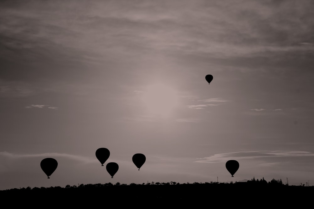 silhouette photography of hot air balloons