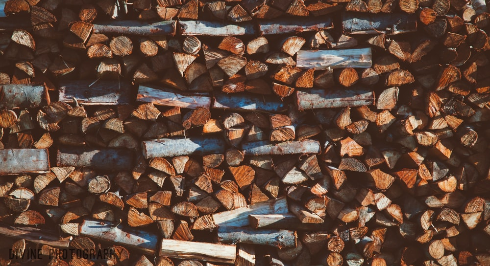 close up photography of brown firewood