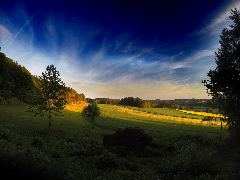 green grass lawn under blue sky
