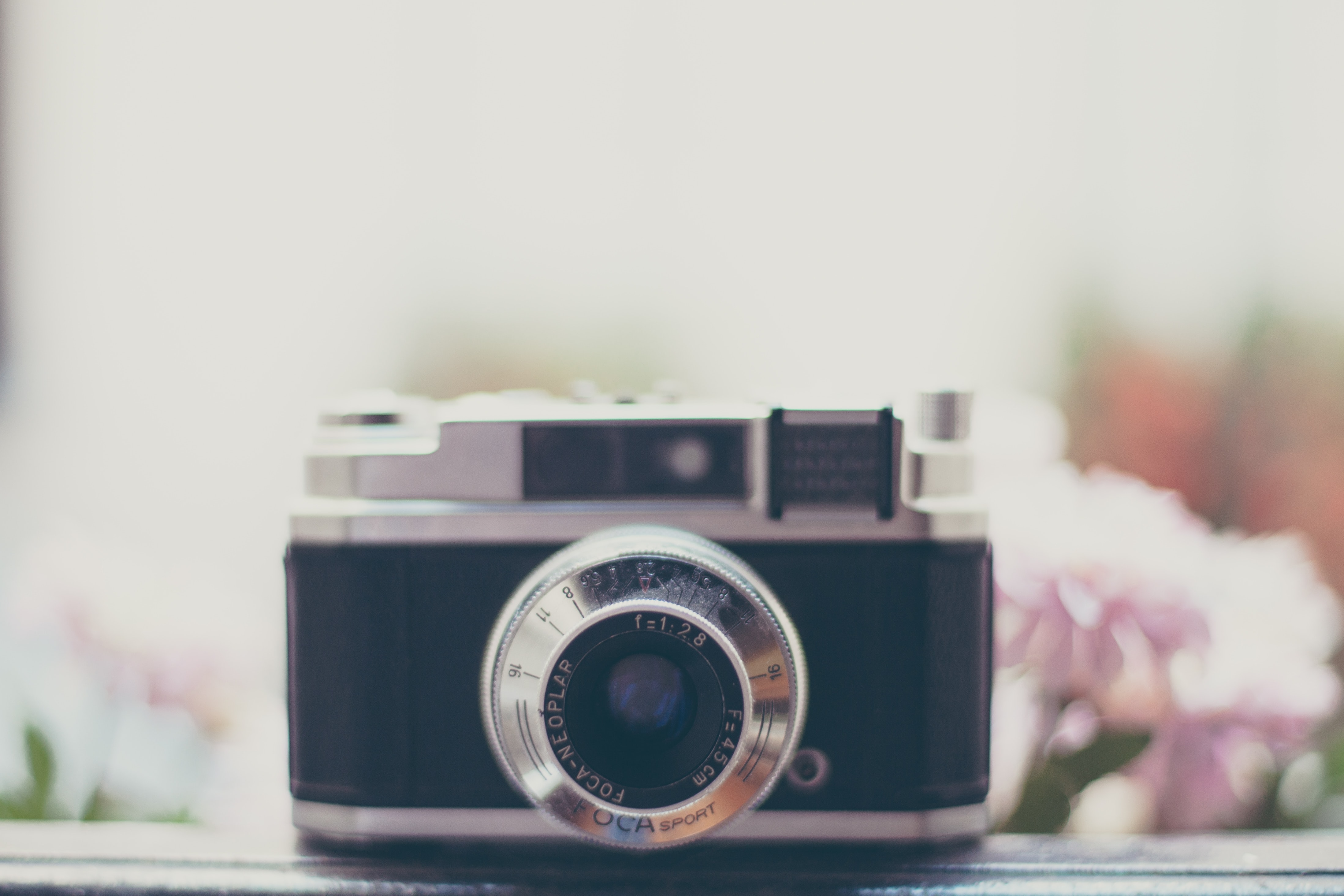 Close-up of a vintage camera with pink flowers in the blurry background