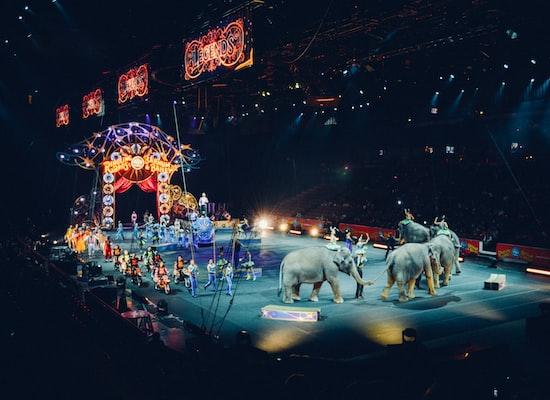 Circus Rondau