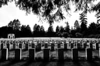 South Park Street Cemetery cemetery stories