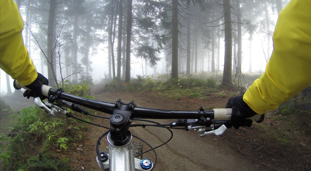 person riding on mountain bike in forest during foggy day