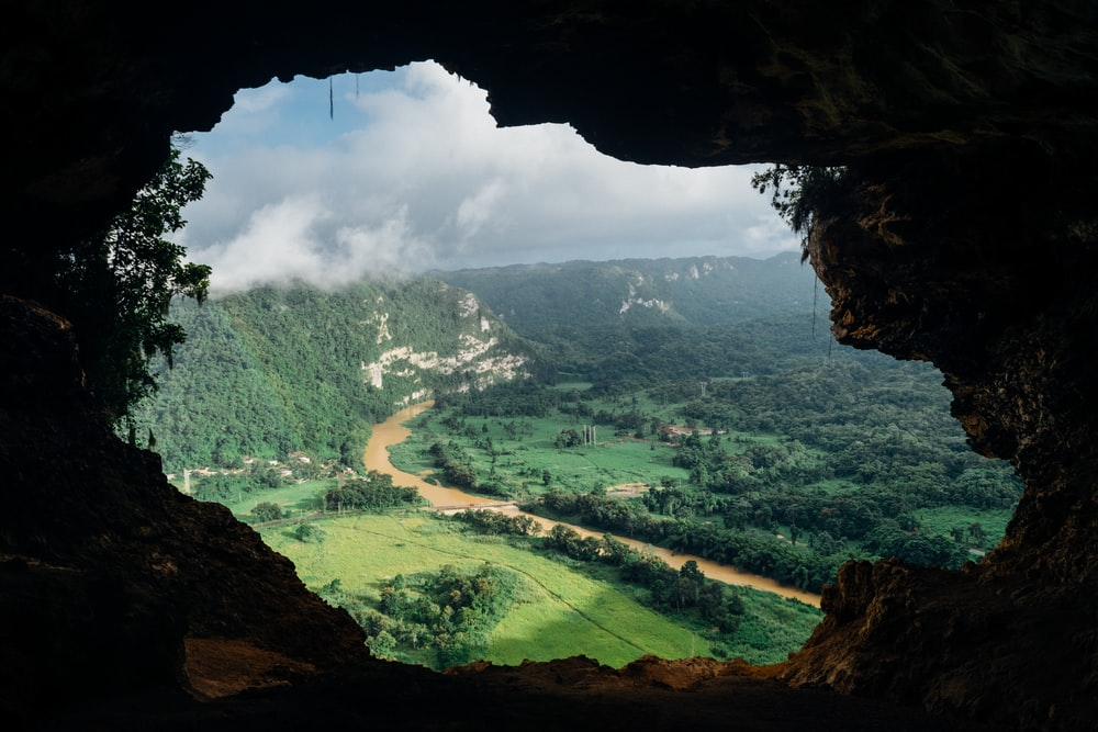 brown cave with over-view of forest at daytime
