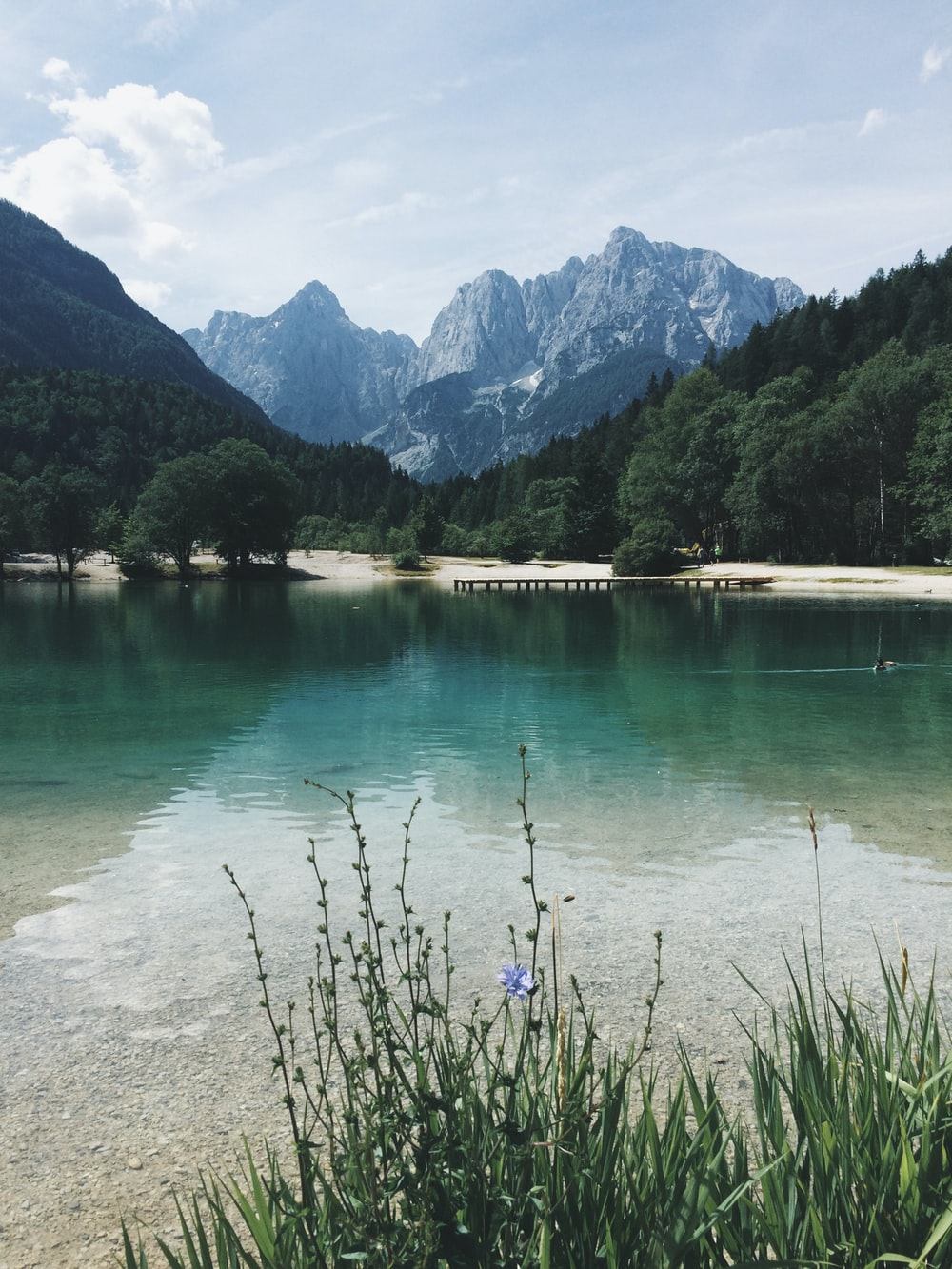 calm body of water surrounded with trees and mountain