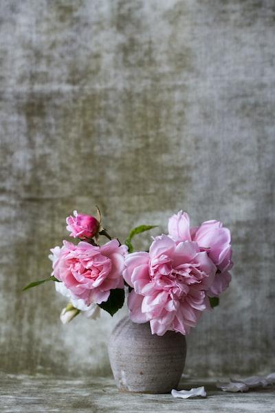 pink flowers on gray ceramic vase