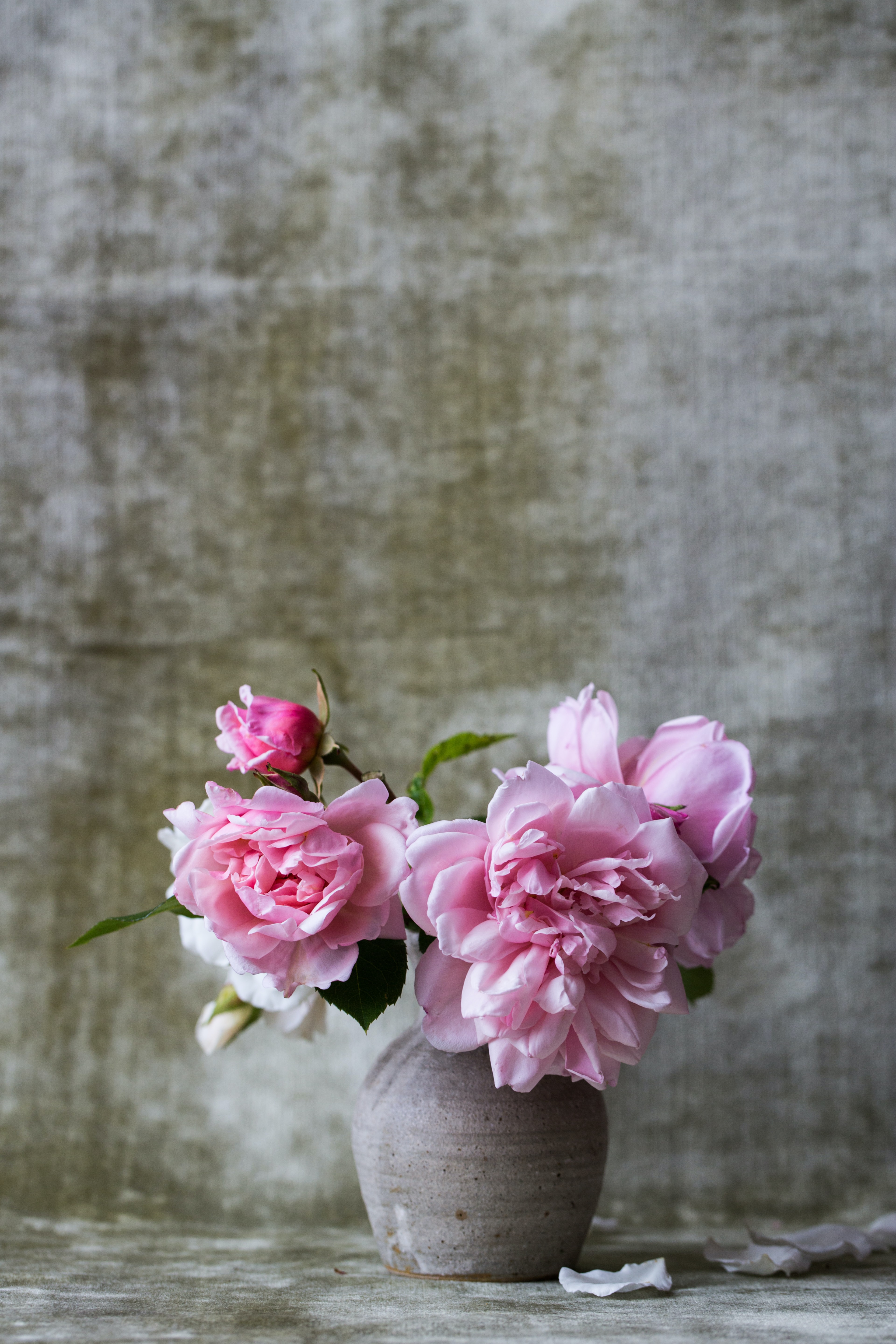 pink flowers on gray ceramic vase