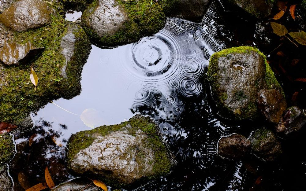 closeup photography of stones