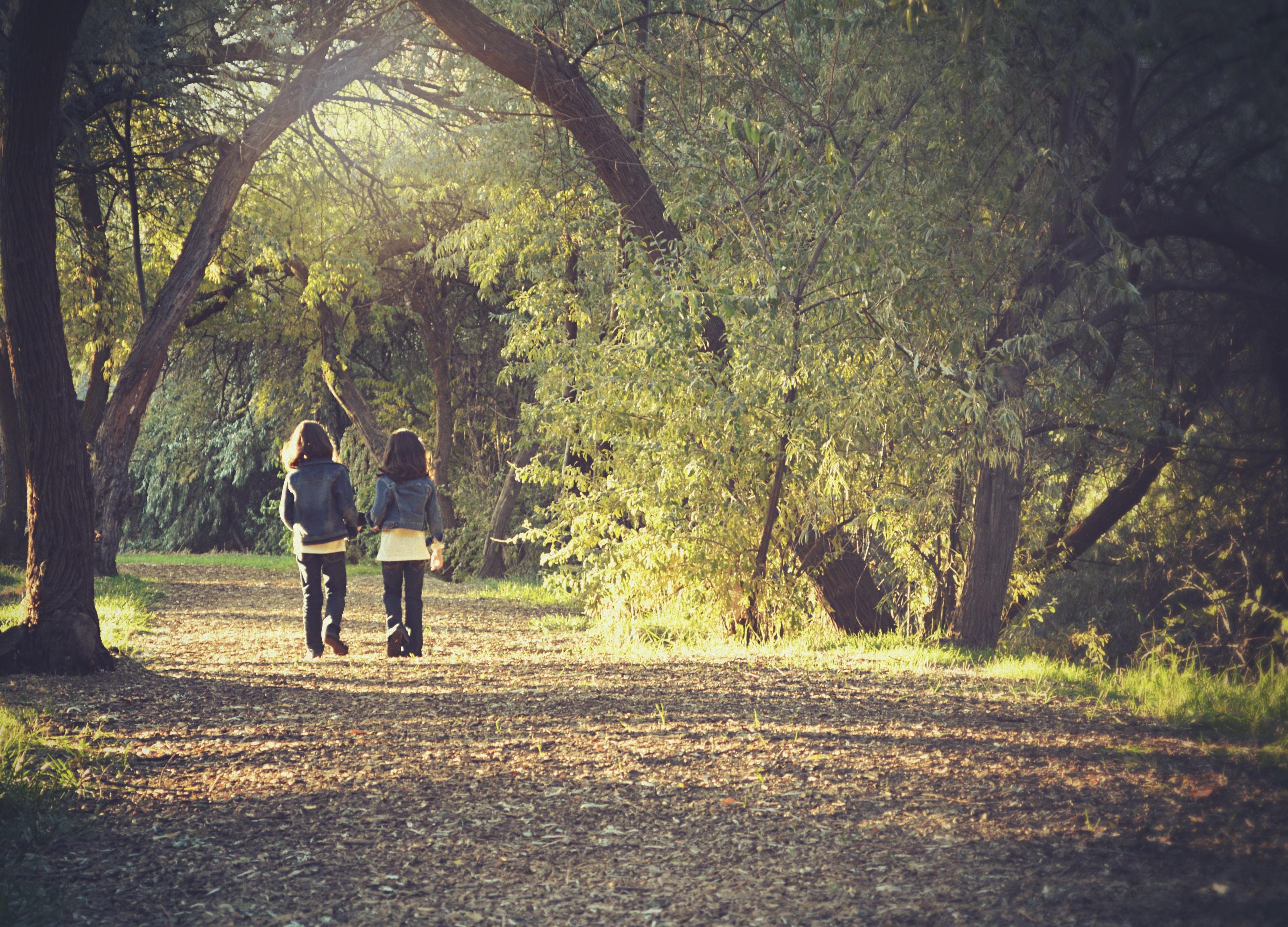 七個走過失落的方法 - 失落花園|高祺淳 諮商心理師