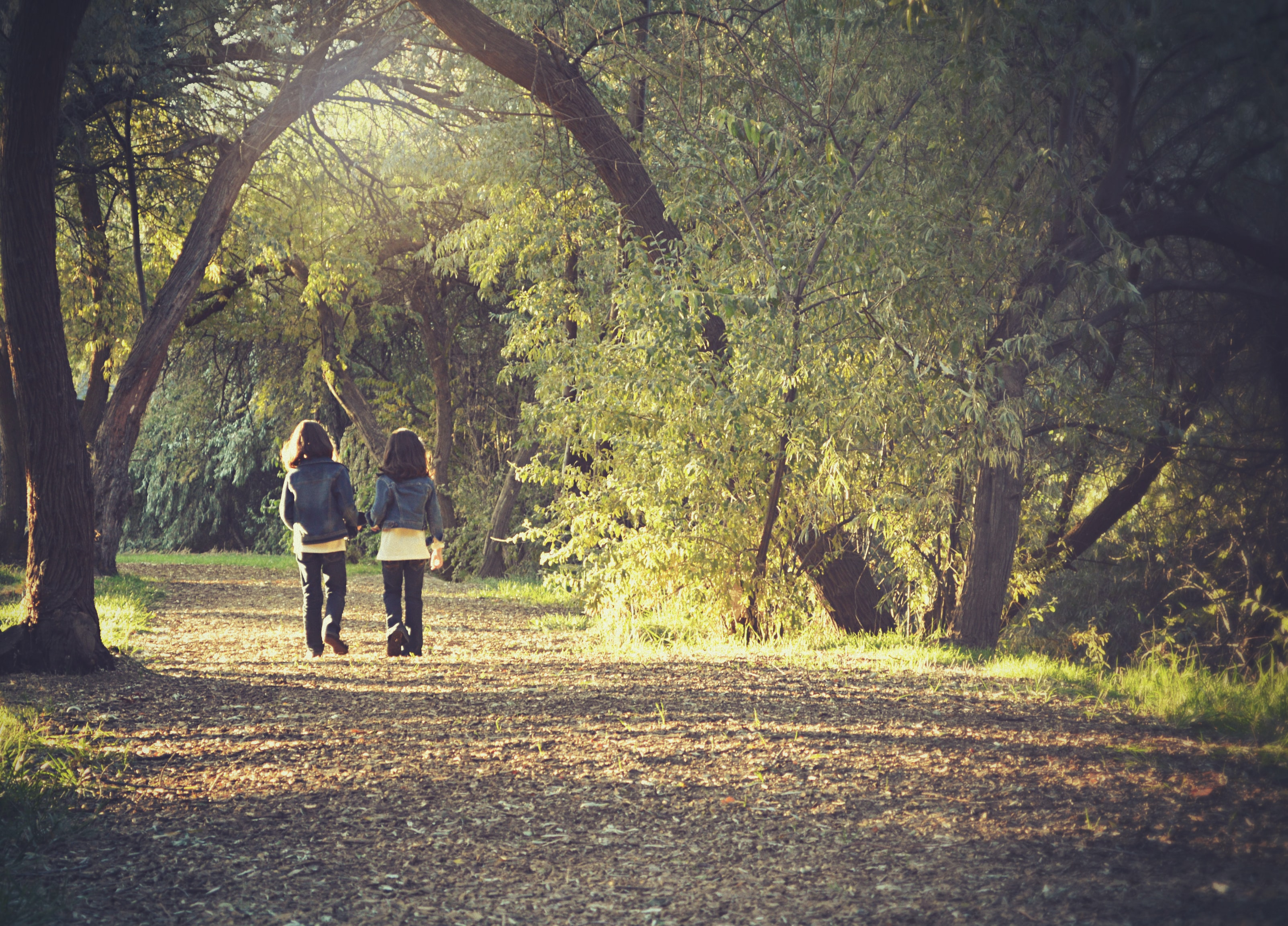 Two kids casually walking through a park path in between the trees