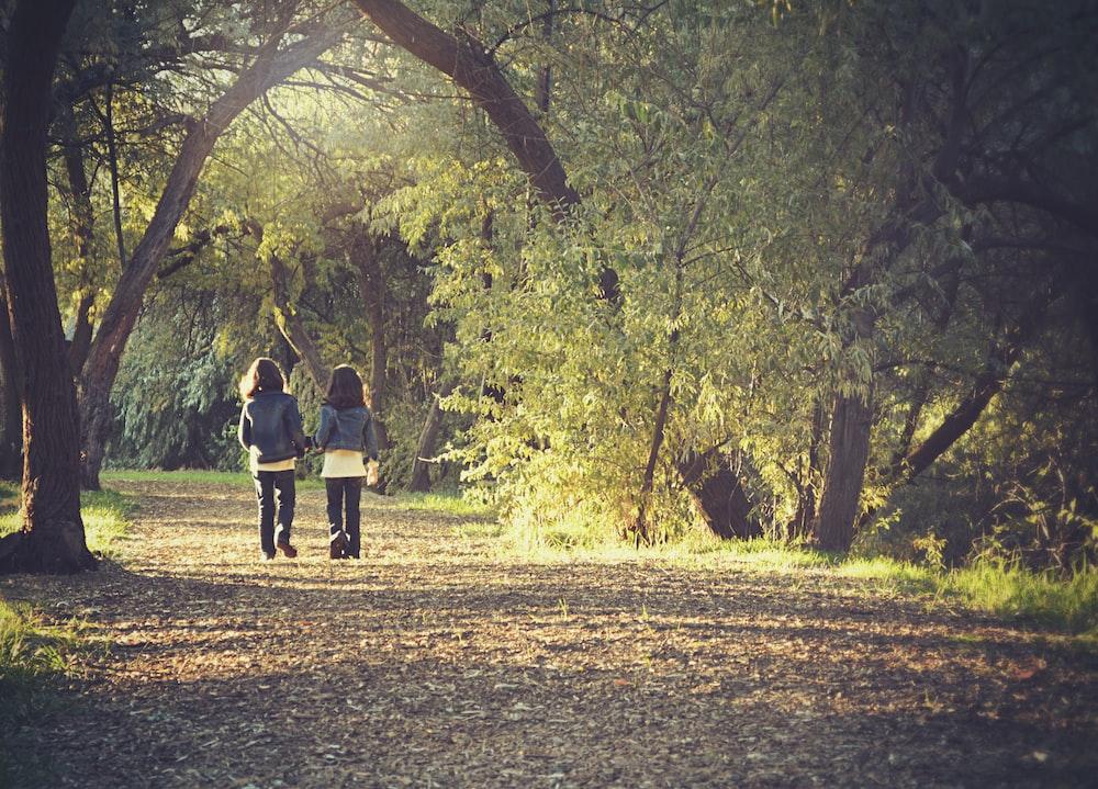 two girl's in blue coat walking road beside trees