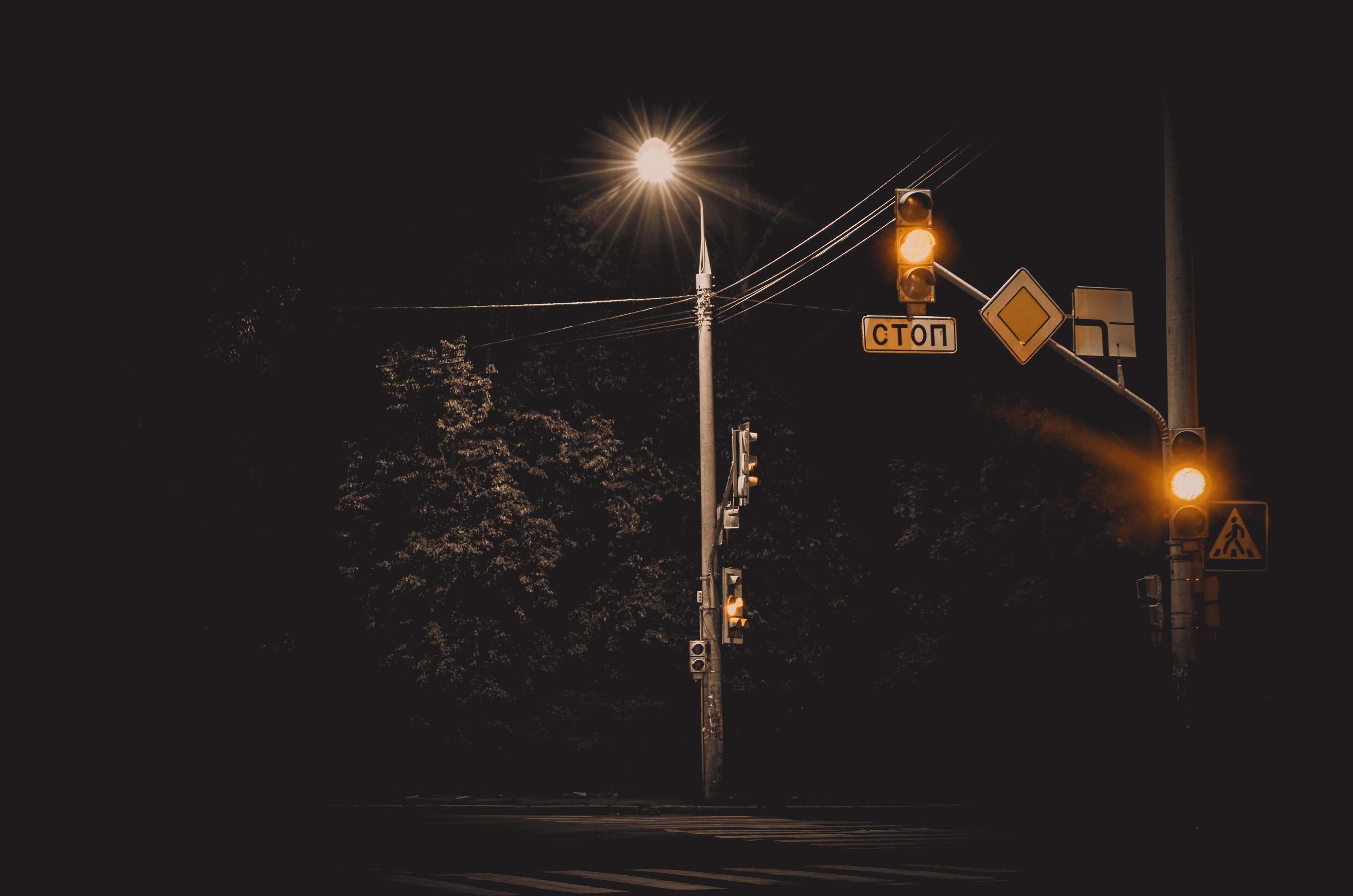 gray street post near green trees during nighttime