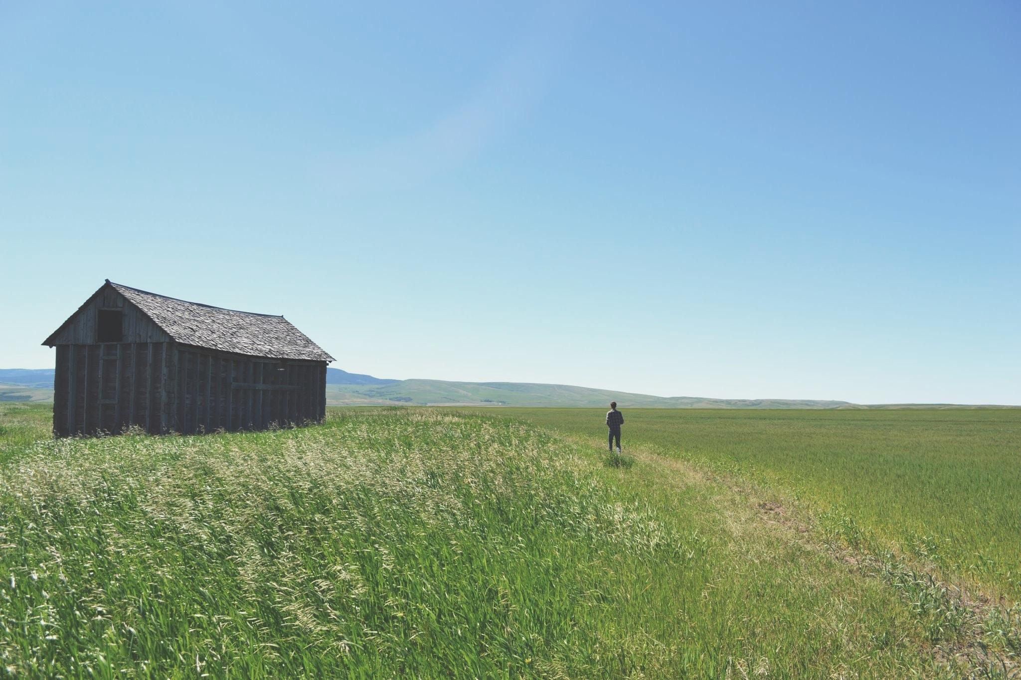 man walking on green grass field during daytime