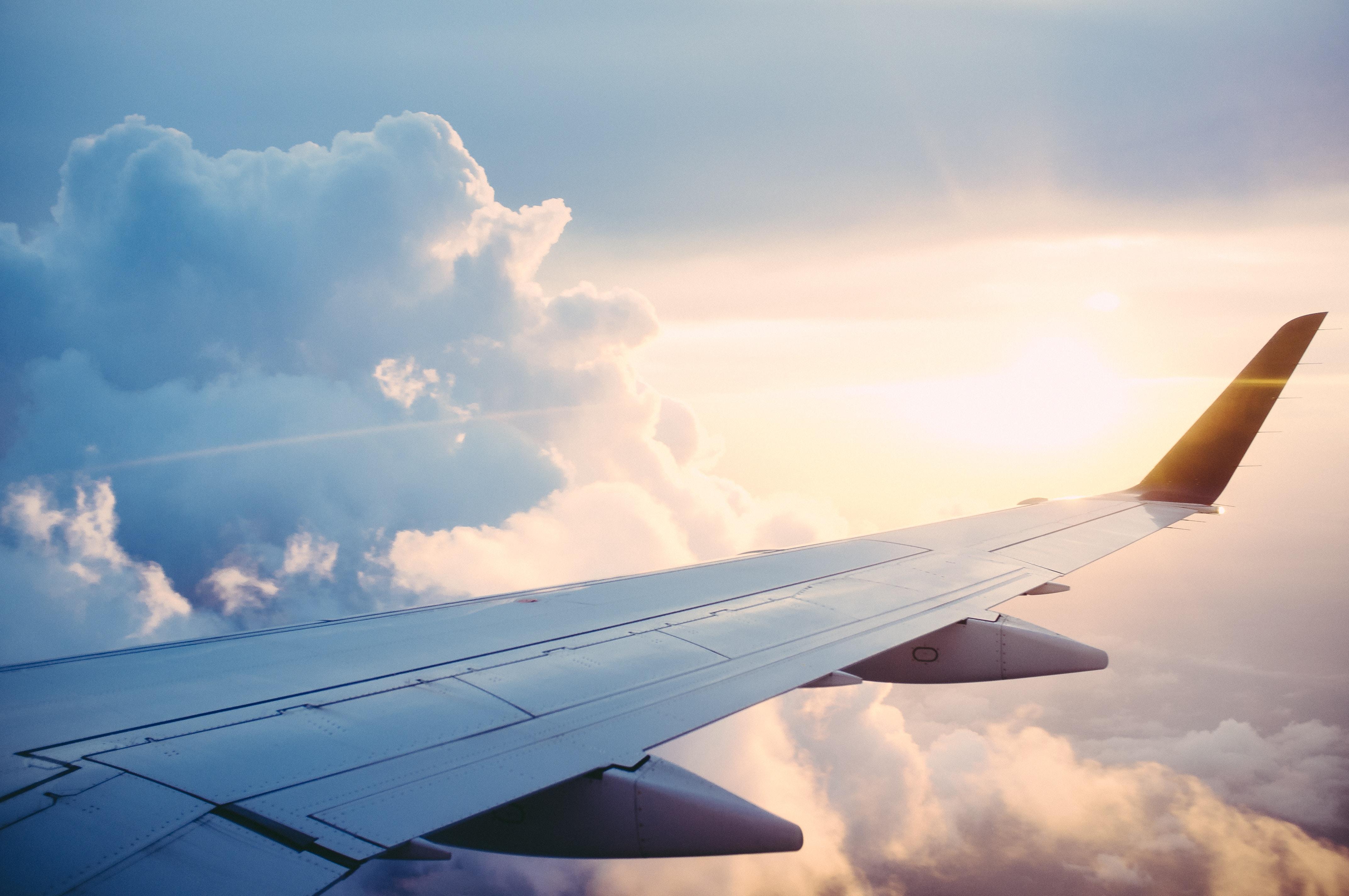 Airplane airplane stories