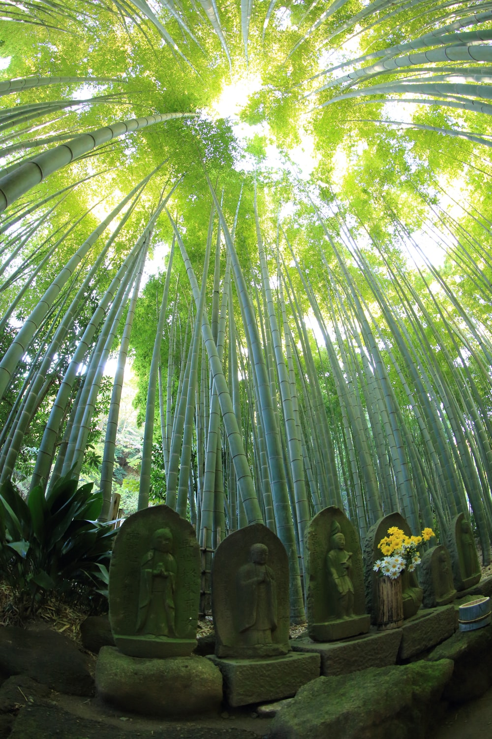 statues under bamboo trees
