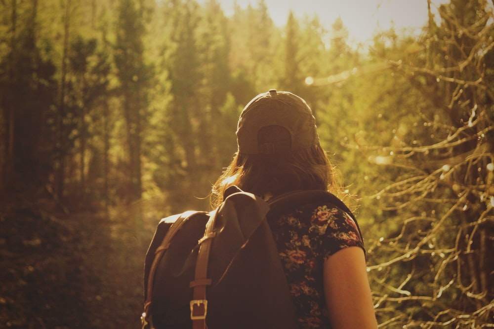 selective focus photography of woman between green pine trees with sun rays during daytime