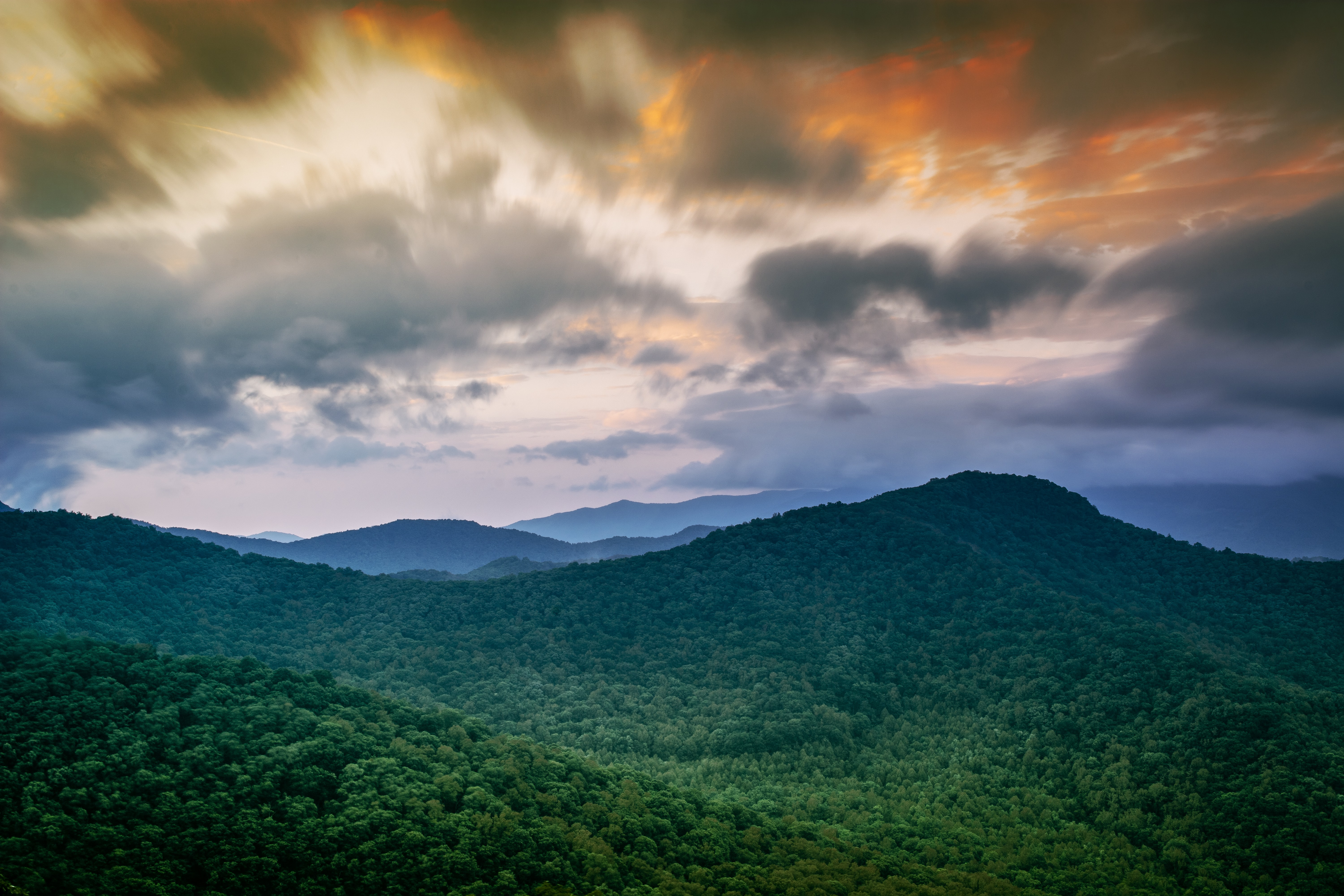 A forest blankets the hills of the jungle at sunset