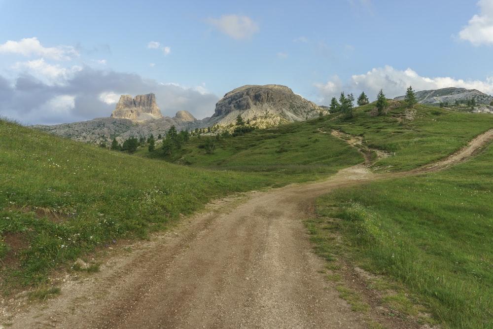 dirt road between grass