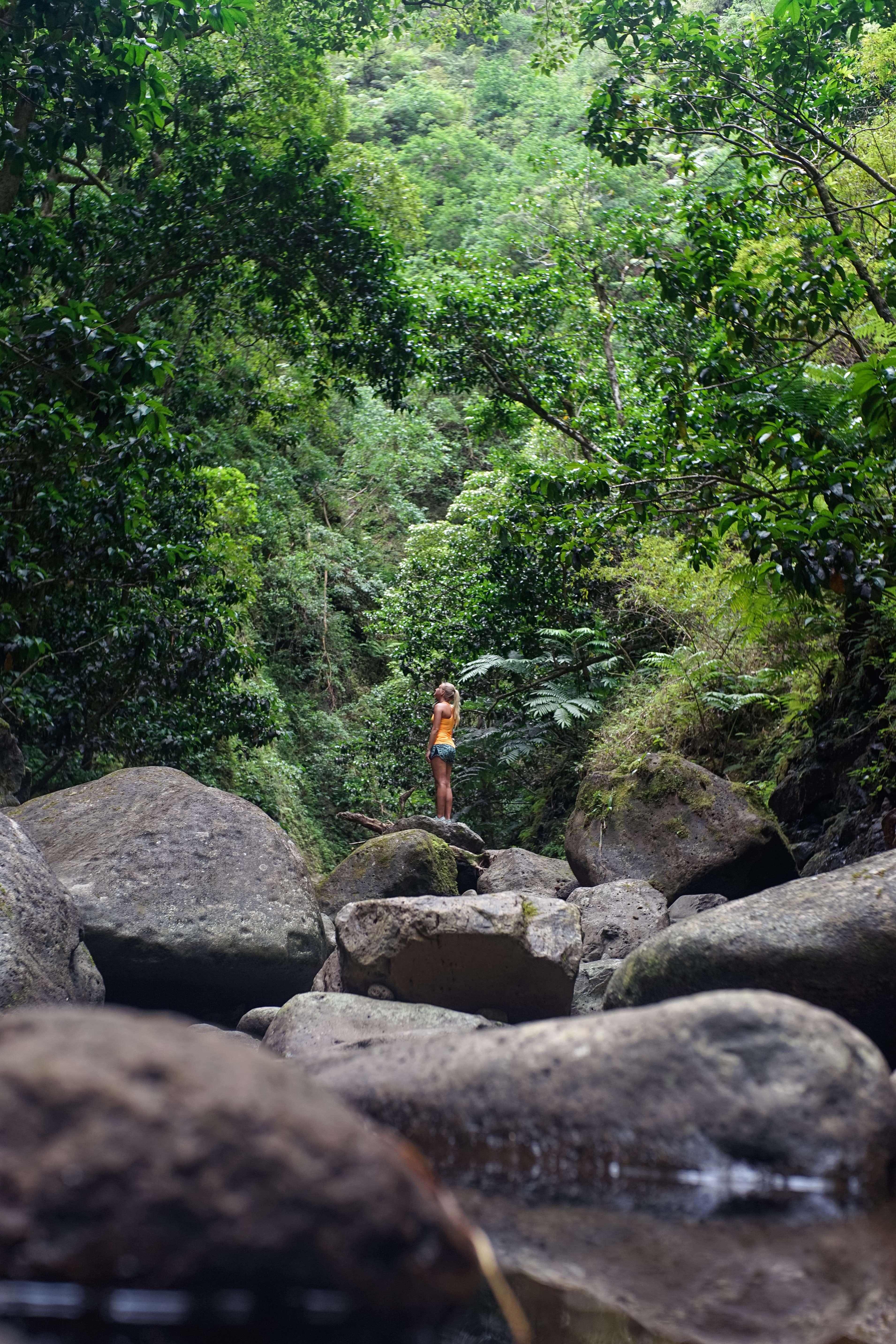 A woman standing alone on a bunch of stones and boulders in a forest in Hauula