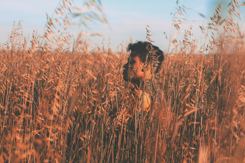 woman in brown wheat field during daytime