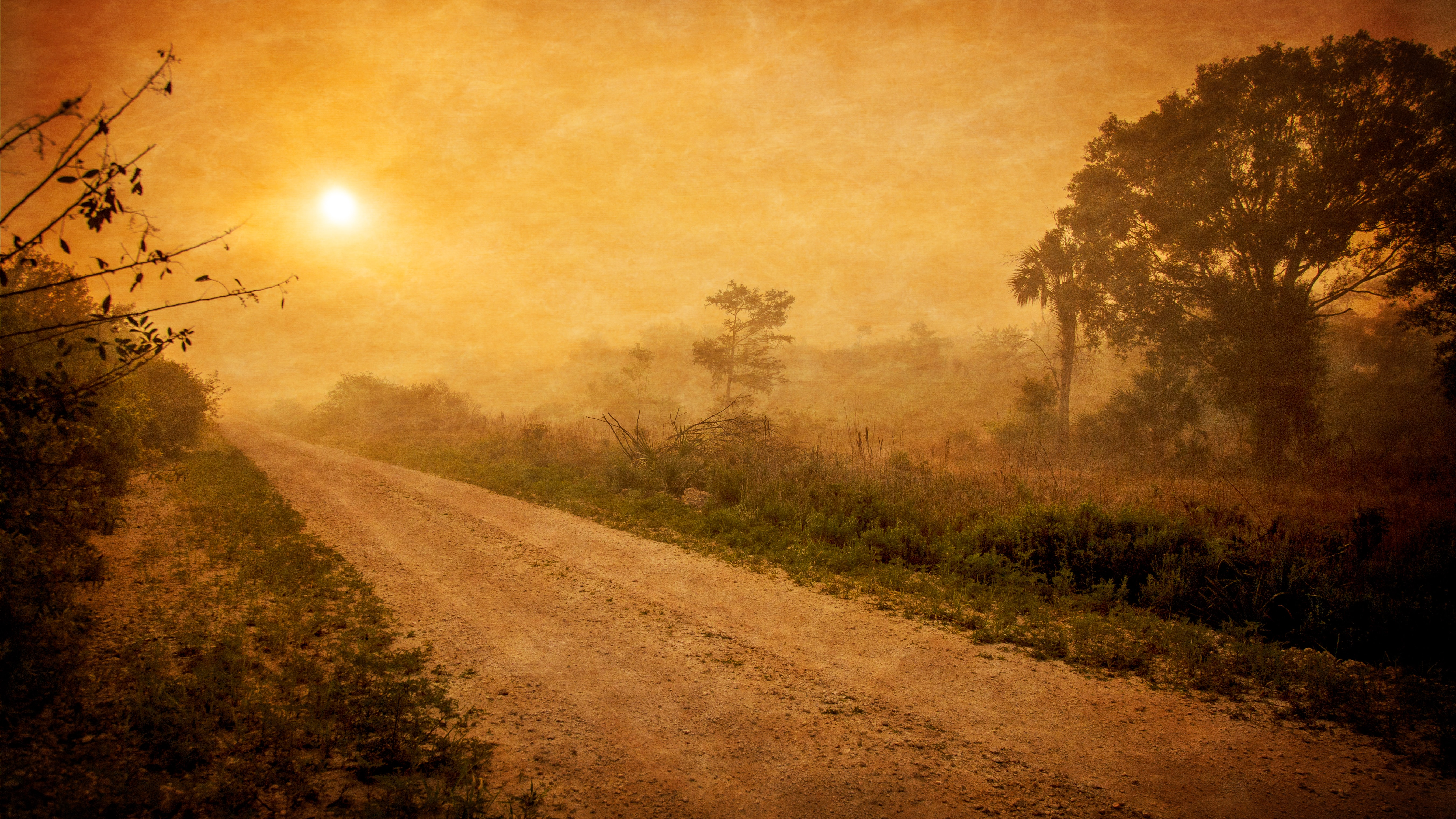 Slowly setting sun over a dirt road in the wilderness