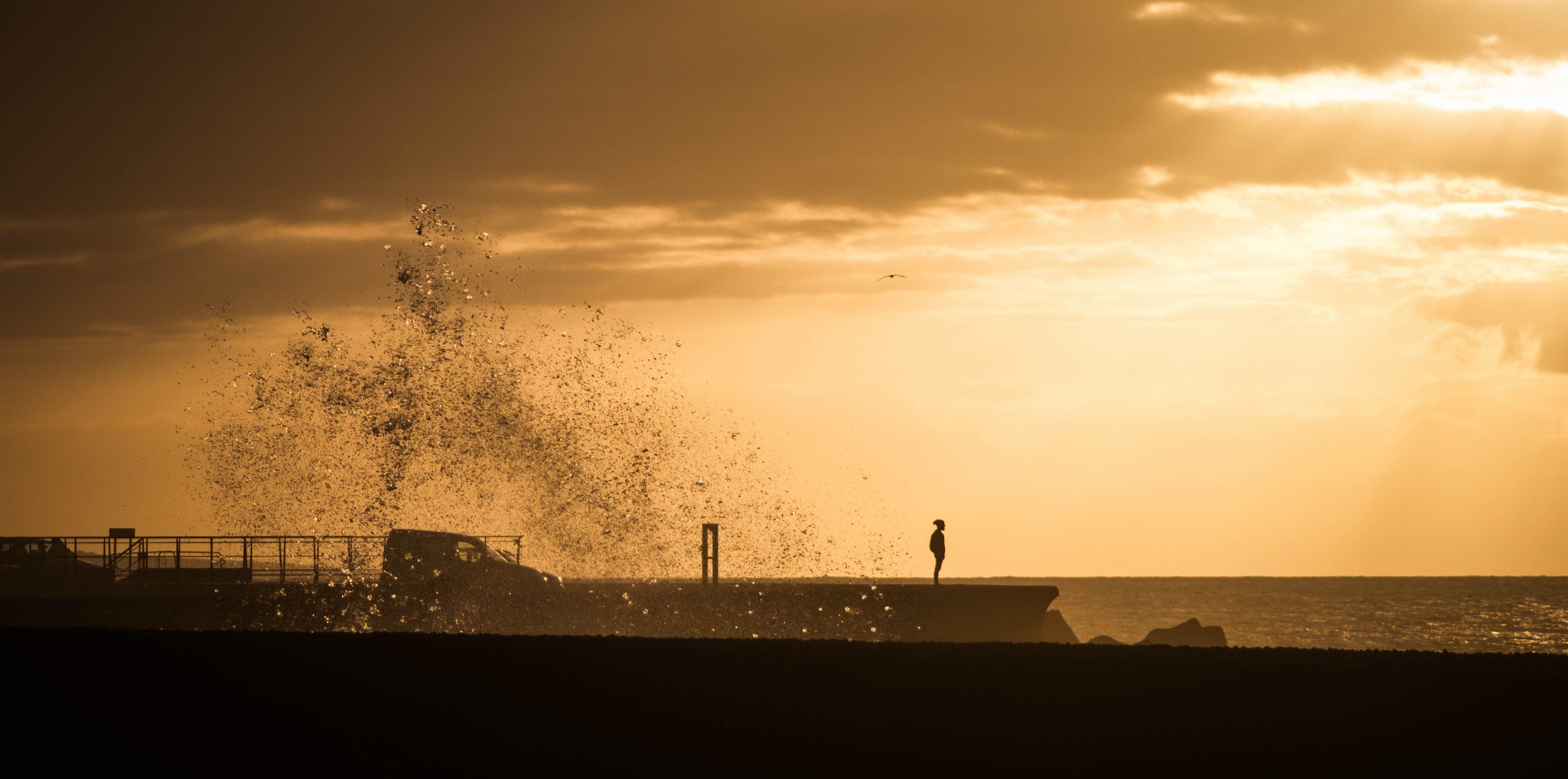 silhouette photo of human standing on beach shore during orange sunset