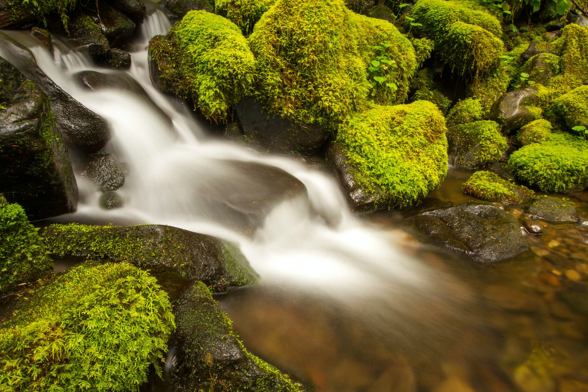 Misty waterfall rushes down mossy rocks