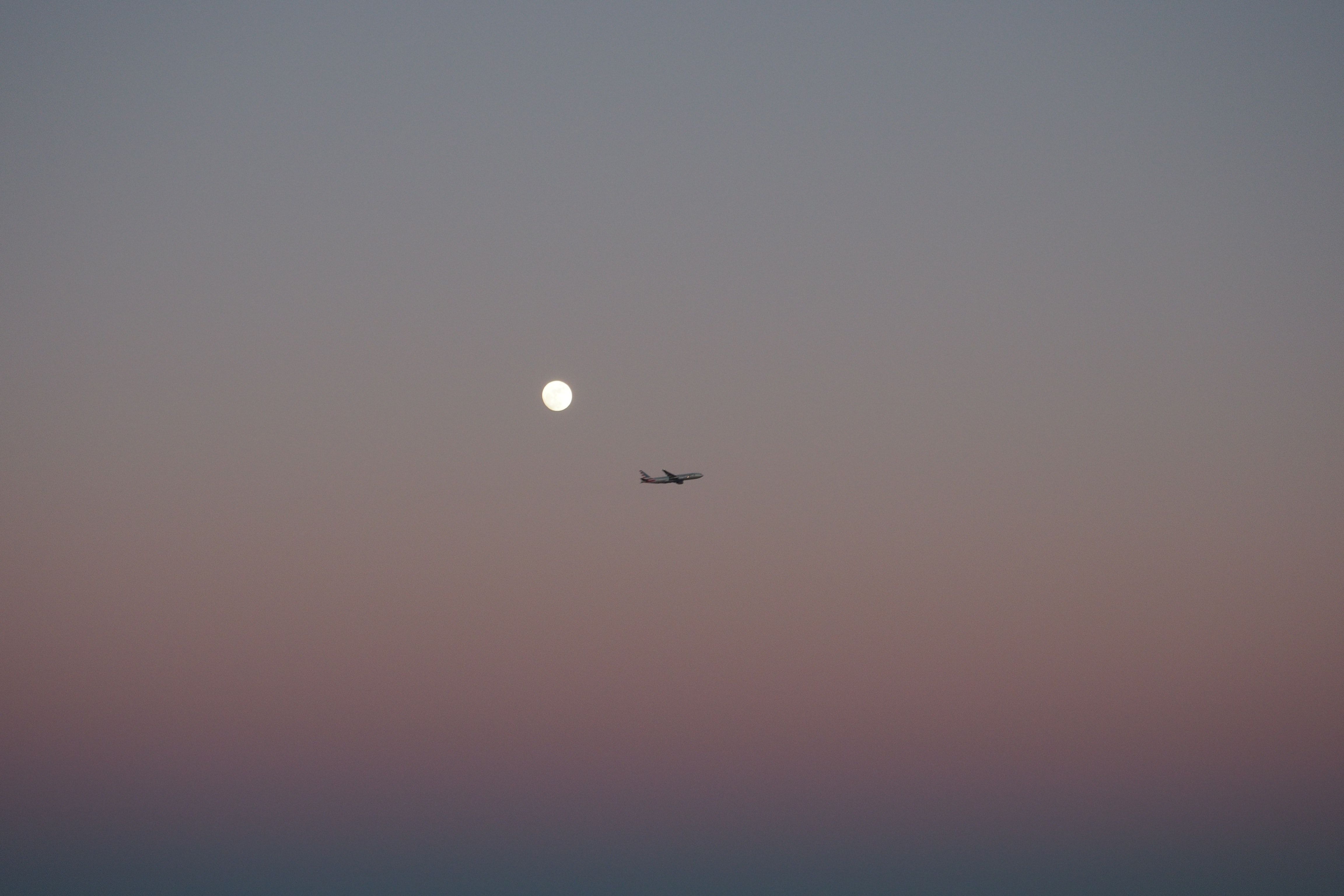 An airplane flies across a pale sky as a full moon shines on