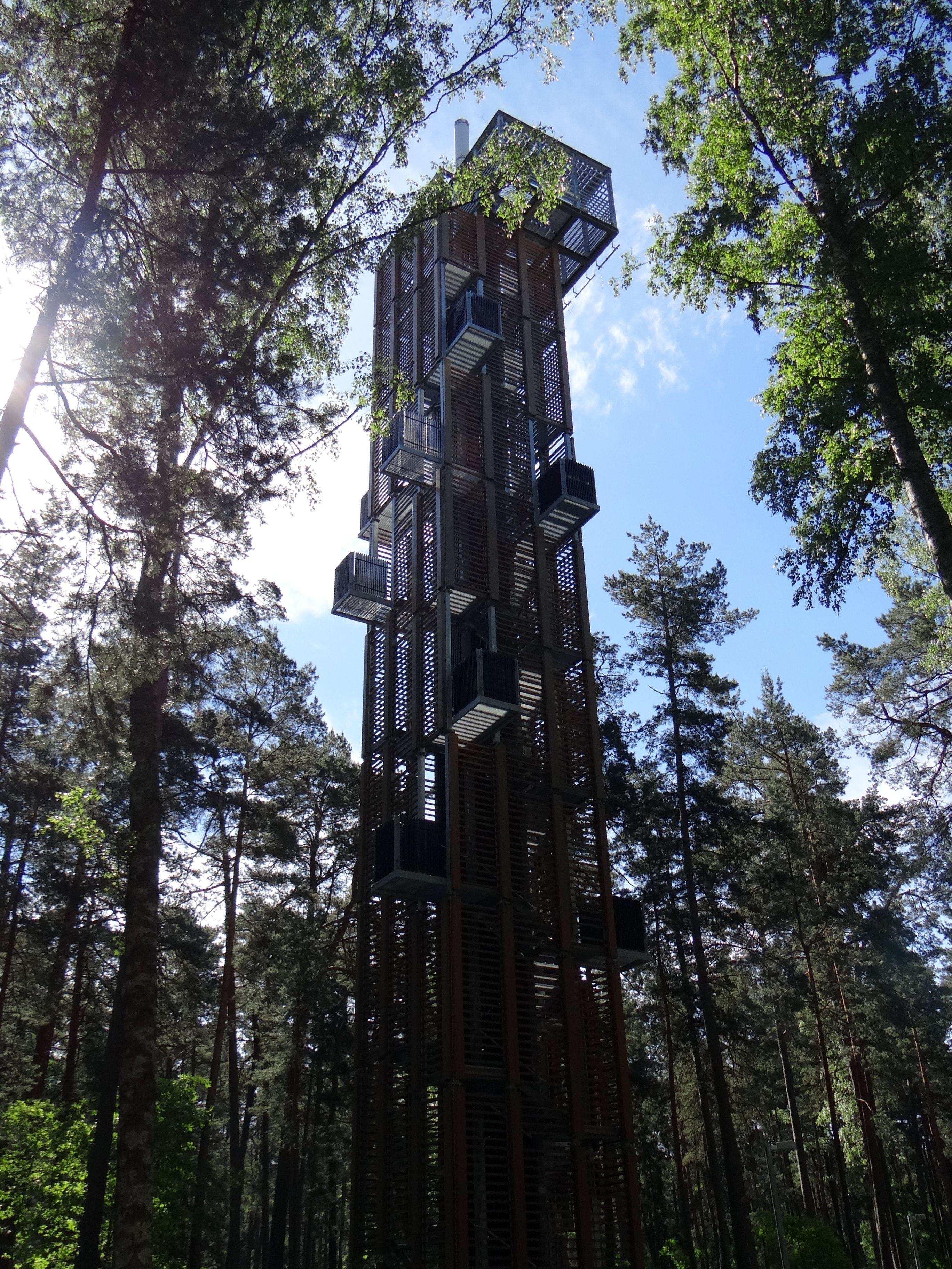 A tall metal tower with multiple staircases surrounded by trees